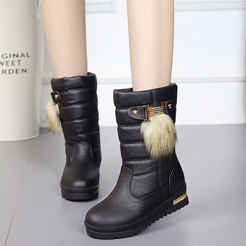 Snow Boots Winter Women Boots Female Down Boots Winter Shoes Woman Plush Insole Botas Waterproof Ladies shoes