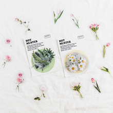 40pcs Hot Muster Stickers Set Tulip Plant Daisy Rose Flower Bear Angel Note Sticker DIY Decoration Adhesive Seal Diary Gift F184
