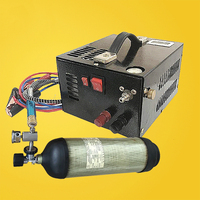 12V 4500psi 300bar 30mpa PCP Air Compressor Mini PCP Pump Including 220V Transformer Vehicle High Pressure Oxygen Cylinder Tank