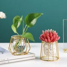 Скандинавское искусство ins Золотое гидропонное стекло ваза