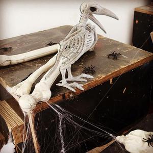 Image 4 - Crazy Bone Skeleton Raven Plastic Animal Skeleton Bones Horror Halloween Decoration Halloween Prop Bird Crow Skeleton Decoration