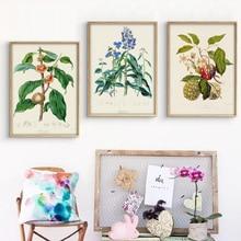 Vintage arte botánico pintura en todo el mundo la vegetación ilustraciones carteles impresiones casa decoración para las paredes del salón de lienzo imagen