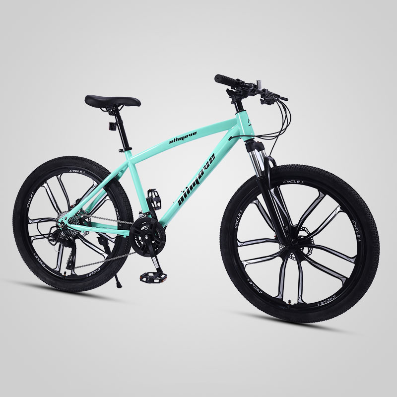 Mountain Bike 26 Inch Ten Knife Wheel Variable Speed Shock Absorption Double Disc Brake Student Adult Bicycle