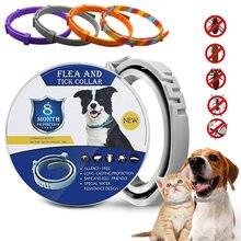 Pulga e carrapato colar para cães gatos até 8 mês pulga colar de carrapato anti-mosquito e repelente de insetos colar de gato breakaway