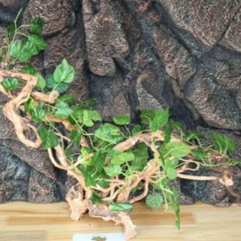 Tanque de répteis paisagismo floresta tropical decoração artcifial falso rattan camaleão lagarto escalada videiras floresta tropical tanque decoração