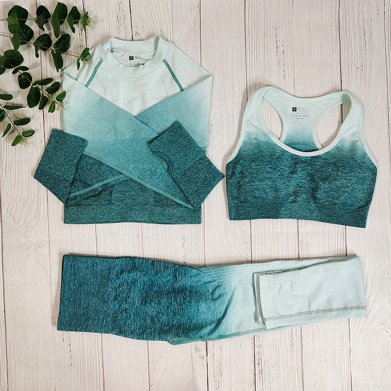 Ombre femmes vêtements de Sport entraînement Yoga ensemble salle de Sport sans couture Fitness vêtements tenue de Sport pour femme Sport soutien-gorge Leggings costume femme