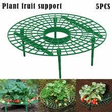Strawberry-Stand-Frame-Holder Garden-Stand-Prop Plant Pillar Balcony Flower-Rack Vine