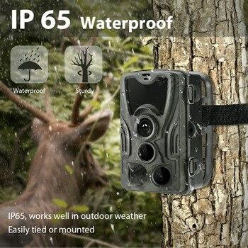 Hunting Camera Trail Cameras HC-801B 64GB 16MP 1080P IP65 Photo Trap 0.3s Trigger Wildlife Surveillance Cams Track 6