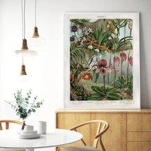 Ретро плакат с растениями Орхидея холст печать snapdragon античный
