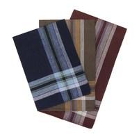 Etteggy men's handkerchief (set of 12 PCs) 45447d 1721