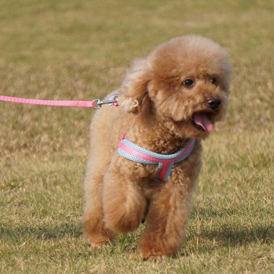 犬猫ハーネスベスト固体通気性メッシュペット製品犬ハーネス調整可能な首輪子犬小型犬屋外ウォーキング