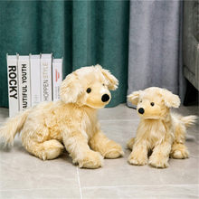 ألعاب محاكاة كرتونية لطيفة مسترد ذهبي يافع كلب طويل الشعر لعبة بيلوتشي حيوانات محشوة ديكور للمنزل عيد ميلاد gif