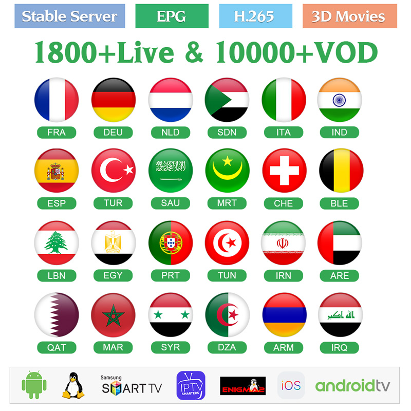 1 Year IPTV Subscription IPTV France Arabic Netherlands Android M3u IPTV French Qatar Belgium Algeria IP TV Arabic Pk QHDTV