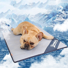 Summer Pet Ice Mat Cooling Bed for Dog Cat Gray Cushion New Blanket Tour Camping Yoga Sleeping Accessories