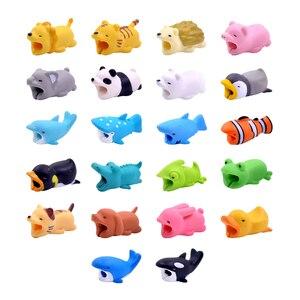 Image 1 - CHIPAL لطيف الحيوان لدغة اللفاف آيفون USB كابل حامي شاحن المنظم Chompers الكرتون لدغات حامل هاتف الملحقات