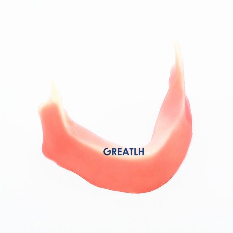 modelo de mandibula mandibular dental com silicone para pratica de incisao implante sutura dentista implante pratica