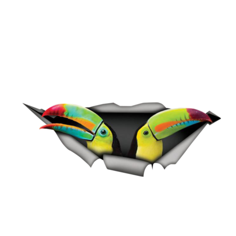 Creative Car Sticke Keel-billed Toucan 3D Car Window Decal Accessories Waterproof Quality Vinyl Cover Scratches PVC 13cm X 5cm