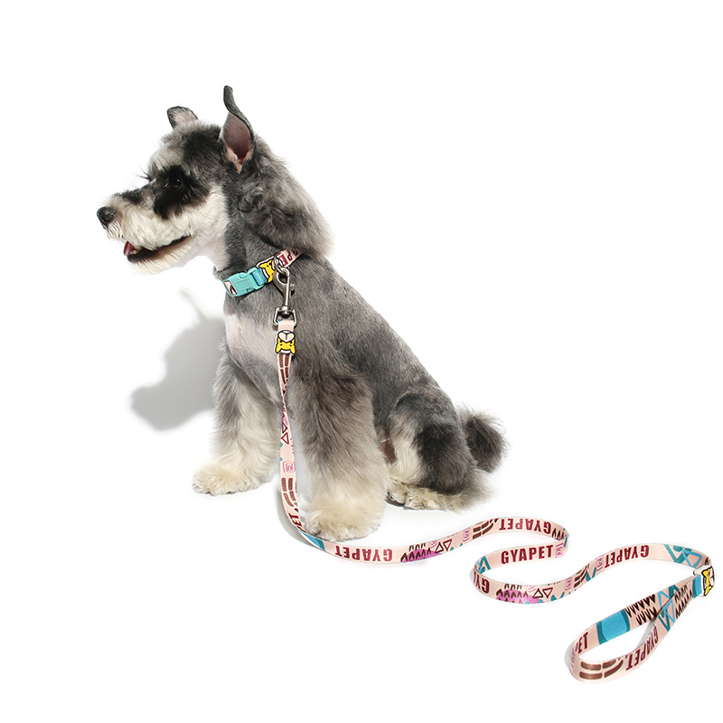 Pet Traction Rope Dog Cat Collar Collar Car Mounted Safety Belt Dog Hand Holding Rope