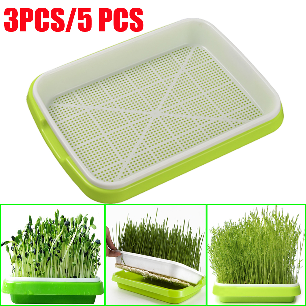 Soilless Culture Beans Hydroponics Seed Germination Tray Seedling Sprout Plate Grow Nursery Pots Vegetable Sprouting Trays Tools