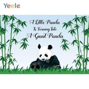 Image 4 - Yeele Cartoon Panda Polka Dots Baby Birthday Party Backgrounds For Photography Customized Photographic Backdrop for Photo Studio