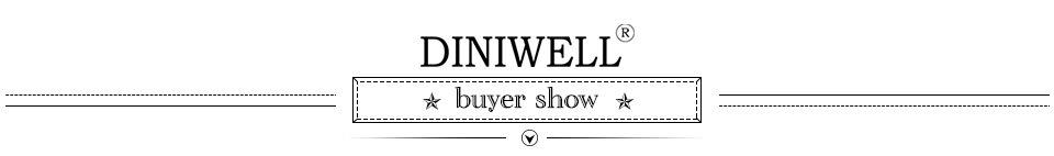 diniwell