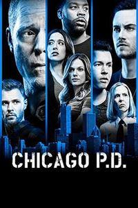 芝加哥警署第六季[全22集]