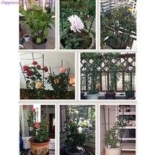 Gardening-Tools Frame Flower-Decorative Trellis-Plant-Support Vine Vegetables-Plant 60cm