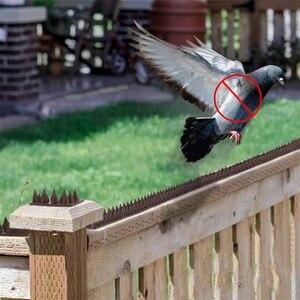 Image 2 - מכירה לוהטת 10 m פלסטיק ציפור ויונה קוצים אנטי ציפור אנטי יונה ספייק עבור להיפטר של יונים להפחיד ציפורים הדברה