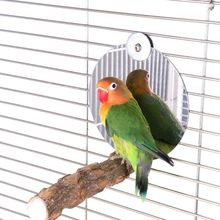 Bird-Mirror Playing-Stand Wood-Stick Perch Parrot with Toy Feet-Paw-Grinding Platform-Toys