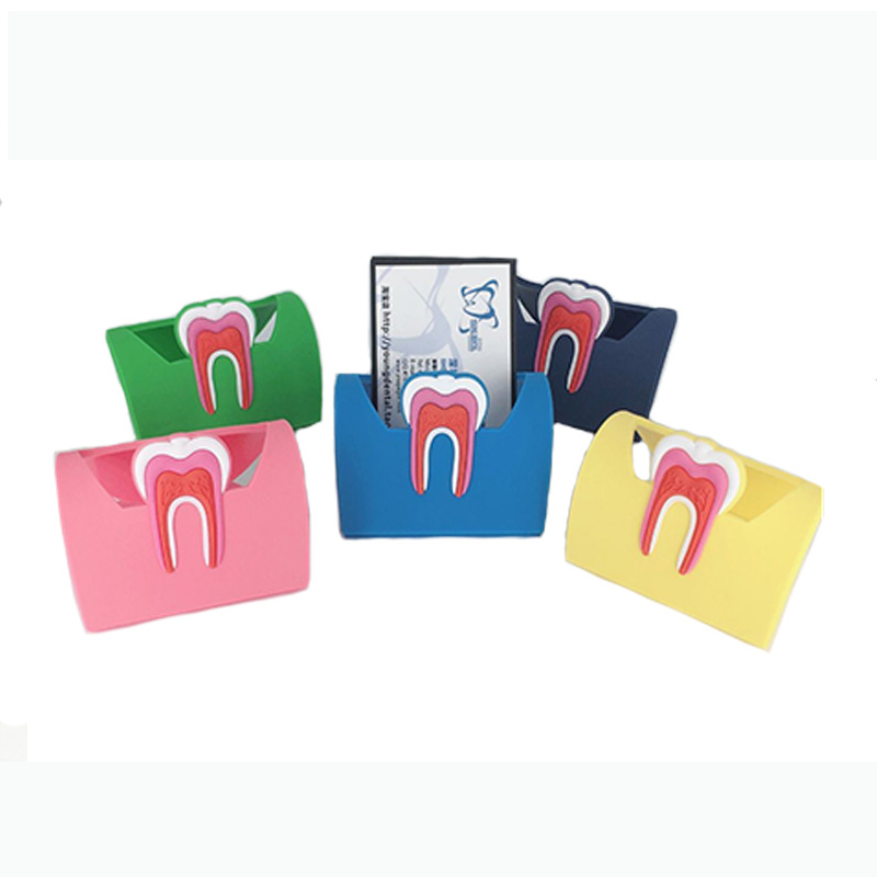 1pcs Dentist Gift Cute Card Holder For Dental Clinic Colorful Rubber Teeth Molar Shape Phone Card Name Storage Dsiaply Stand