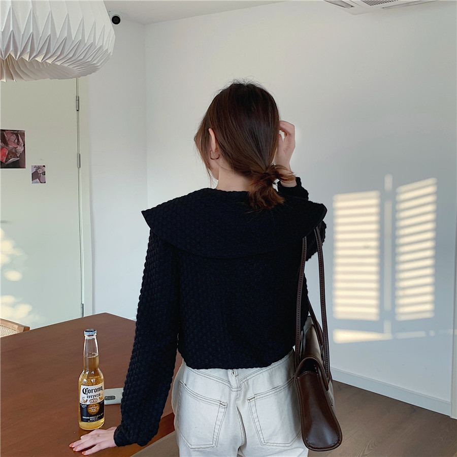 Haca3dc5c75a74b338c540d866104f1ffZ - Spring / Autumn Big Lapel Long Sleeves French Lace Buttons Blouse