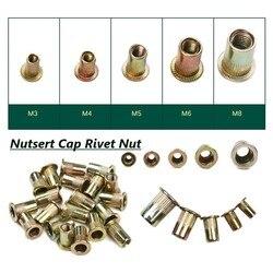 M3/M4/M5/M6/M8 Zinc Plated Knurled Nuts Rivnut Flat Head Threaded Rivet Insert Nutsert Cap Rivet Nuts Hand Tool