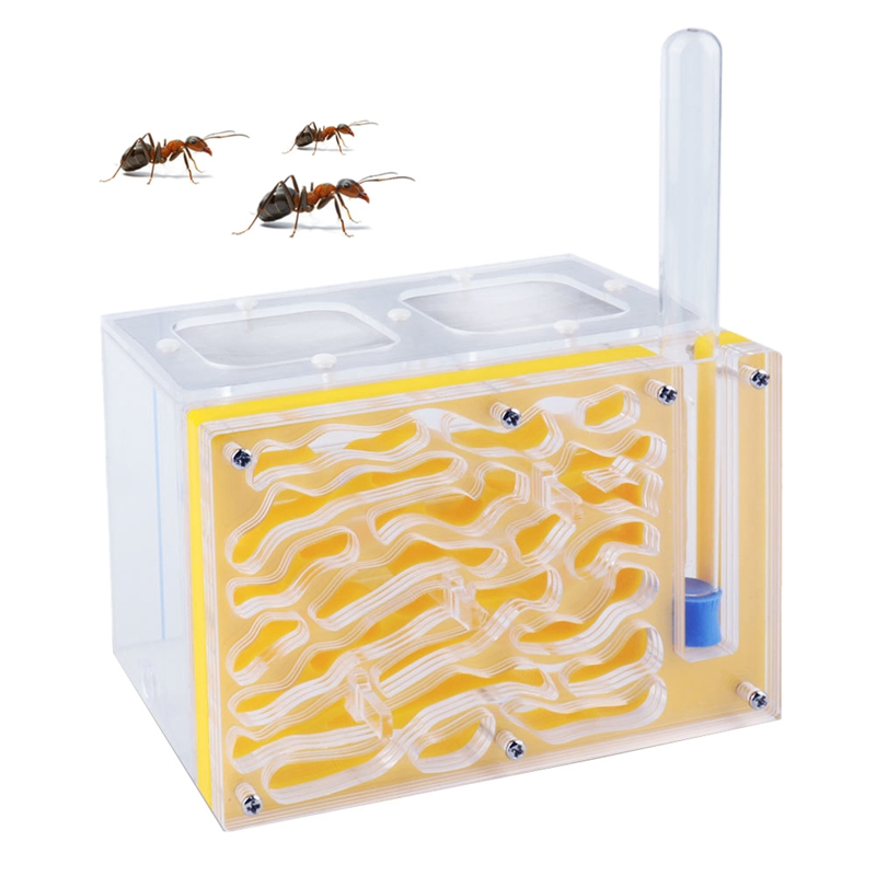 Acryl Ant Nest Yellow Color T Design DIY with Feeding Area Ant Nest font b Pet