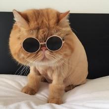 Очки cat John Lennon, Поляризационные солнечные очки в стиле хиппи Для Рейв, вечерние, круглые солнцезащитные очки, круглые линзы в стиле хип-хоп, Funnny Cat