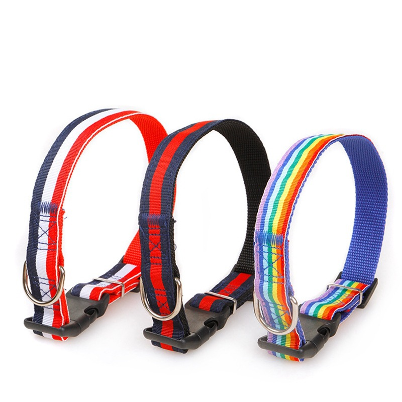 Pet Supplies Pet Colorful Neck Ring Hand Holding Rope Small Dogs Color Dog Traction Belt