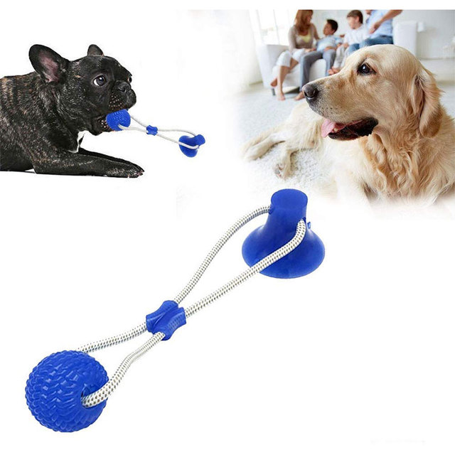 Suction Cup Dog Push Toy with Ball Pet Tooth Cleaning Chewing Rubber 4