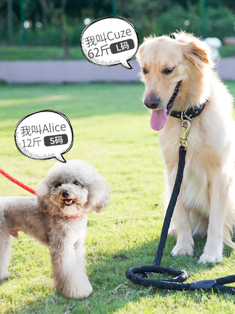 Send Teddy Dog Hand Holding Rope Dog Chain Dog Golden Retriever Bell Rope Large And Medium Small Dogs Walking Chinlon Unscalable