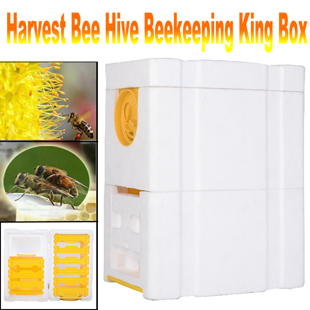 Harvest Bee Hive Beekeeping King Box Pollination Box Beekeeping Tool Perfect For Garden Pollination