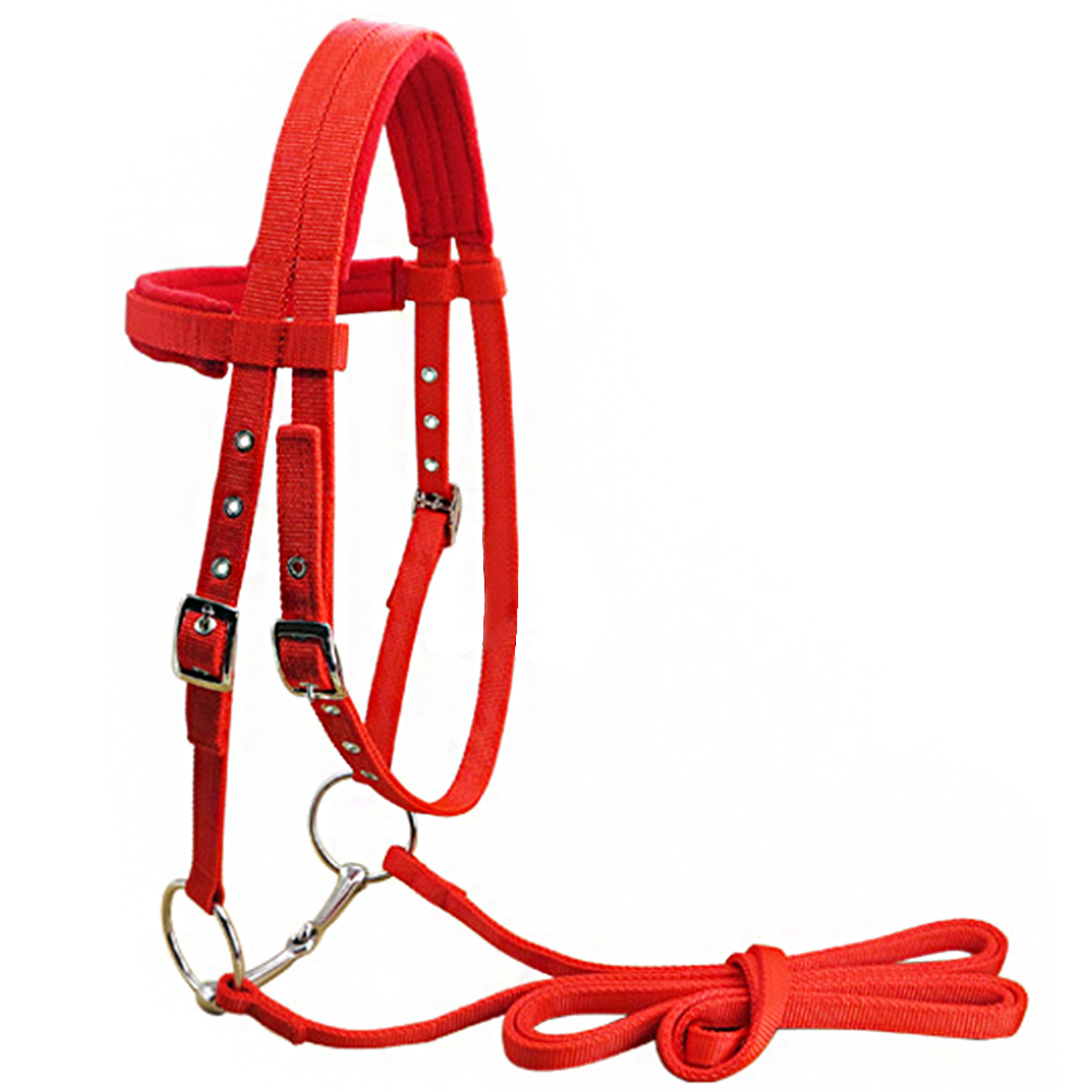 Polar Fleece Horse Halter Thicken Riding Equipment Soft Sports With Bit Rein Belt Competition Bridle Adjustable Strap Protective