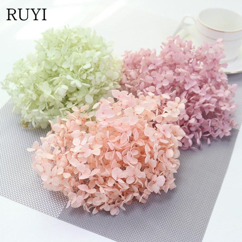 Высококачественные натуральные свежие консервированные цветы, цветок гортензии для рукоделия, реальные вечные цветы, материал 3 г/лот