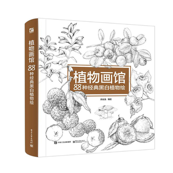 Chinese coloring book line pencil sketch drawing textbook Chinese ancient beauty drawing book Adult art color painting book neal s yard beauty book