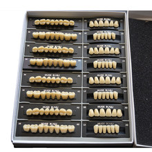 Ensemble complet de dents en polymère synthétique, 4 pièces/boîte, dentier en résine