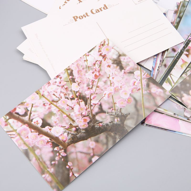 30 Sheets Peach Blossom Paintings Retro Vintage Postcard Christmas Gift Card Wish Poster Cards  3