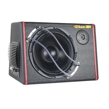 Direct Manufacturer New Style Car Audio 12V 10 Inch Speaker Subwoofer