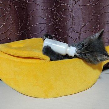 Funny Banana Shape Pets Cat Bed House Cozy Cute Banana Puppy Cushion   5