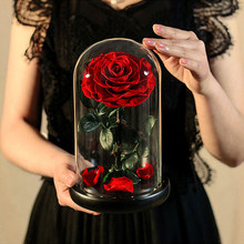 AINYROSE piękna i bestia zakonserwowane kwiaty czerwona róża wieczna kwiat w szklanej kopule Valentine prezent dla dziewczyny Dropshiping