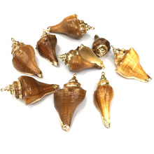 Wholesale New Natural Shell Conch Pendants Charms for Jewelry Making Supplies DIY Bracelet Necklaces Accessories Size 25x50mm