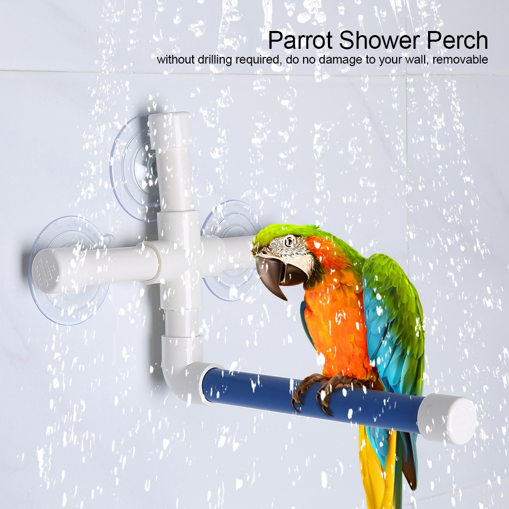 TINGHAO font b Pet b font Birds Shower Perches Toys Bird Bath Standing Platform Rack Wall
