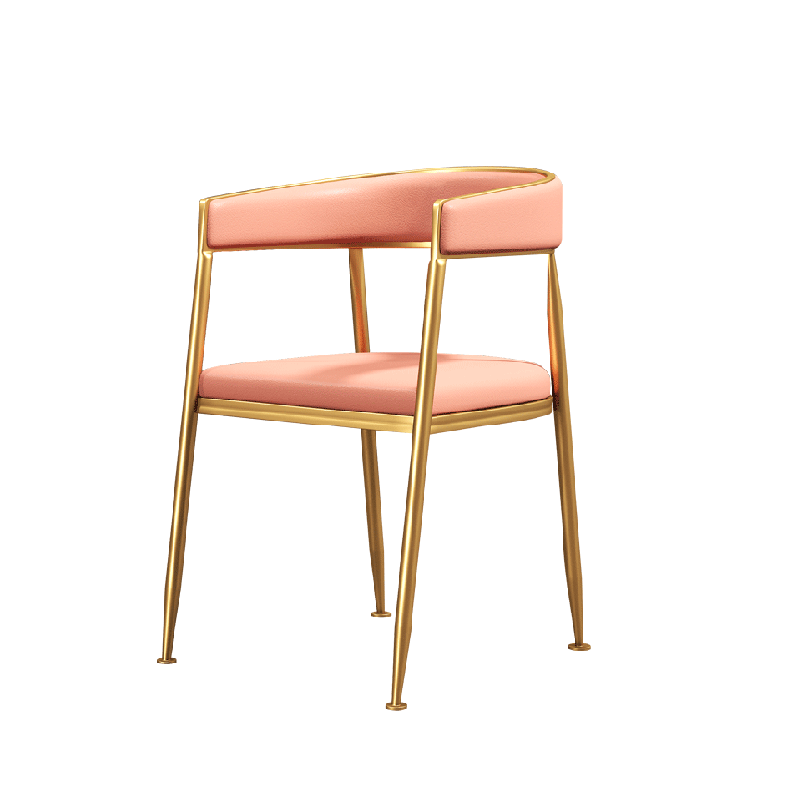 Nordic Dining Chair Modern Minimalist Home Back Desk Chair Creative Cafe Adult Stool Restaurant Leisure Chair