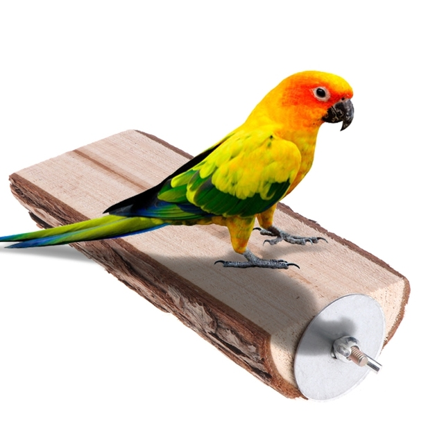 Parrot Perch Bird cage Toy Wooden Stand Holder Cage Rack Platform Squirrel Chinchilla